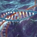 Genome Editing – CRISPR