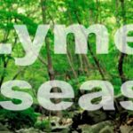 Trends in Lyme Disease: Focus on the Northeast