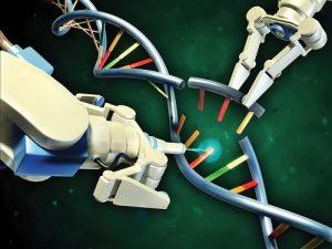 frankmagliochettireport_genome_editing
