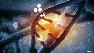 crispr-genome-editing-franlmagliochetti-report_northandoverma